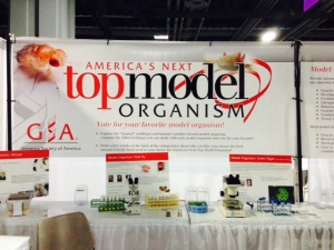 America's Next Top Organism Competition